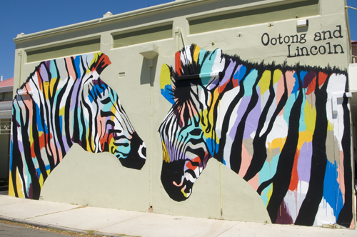 Zebra mural at the Ootong&Lincoln Cafe in South Fremantle