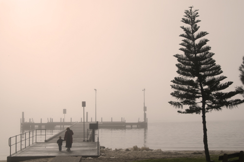 Misty morning at Point Walter