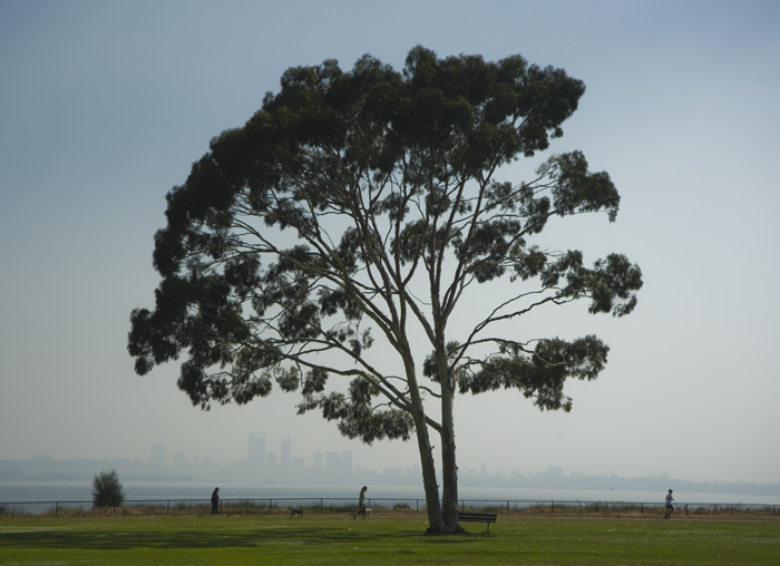 Smoke haze at the Swan River.