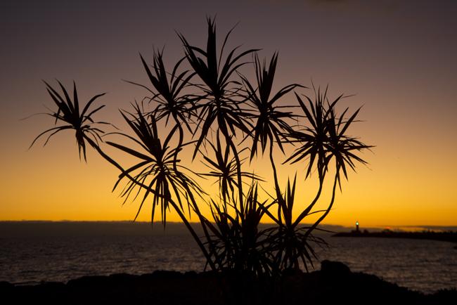 bathers beach sunset 2