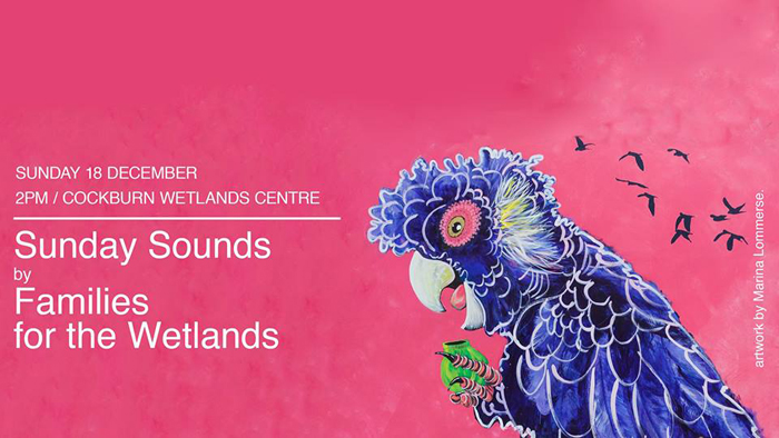 wetlands-sunday-sounds