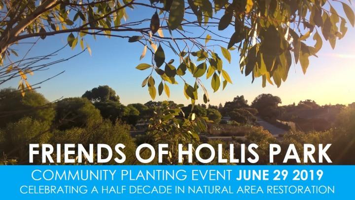 Hollis Park June 29
